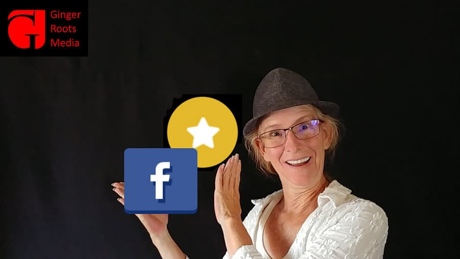 Facebook Top Fan Badge